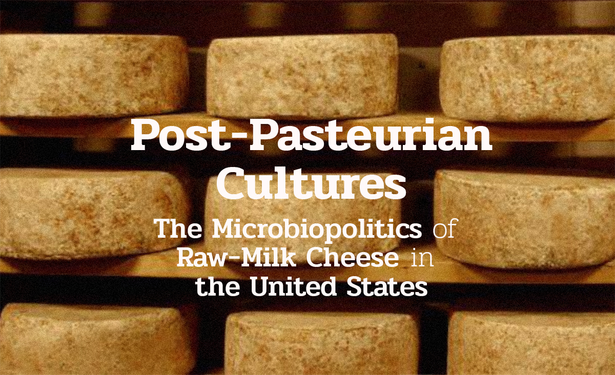 Post-Pasteurain Cultures