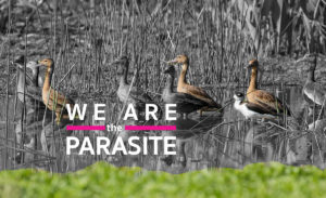 Cover- weareparasite