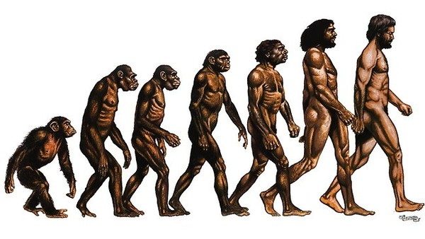 1361835434_5173_evolution